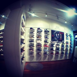 #stake#shop#sneakers#nikesb#nike#skateshop#flystreet#olloclip#iphone#photography#fisheye#daily (Taken with instagram)