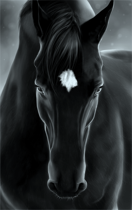 star struck  image: Black Beauty by Cerinne