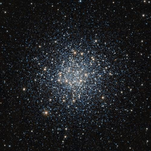 A new image of Messier 55 from ESO's VISTA infrared survey telescope shows tens of thousands of stars crowded together like a swarm of bees. Besides being packed into a relatively small space, these stars are also among the oldest in the Universe. Astronomers study Messier 55 and other ancient objects like it, called globular clusters, to learn how galaxies evolve and stars age. Globular clusters are held together in a tight spherical shape by gravity. In Messier 55, the stars certainly do keep close company: approximately one hundred thousand stars are packed within a sphere with a diameter of only about 25 times the distance between the Sun and the nearest star system, Alpha Centauri. About 160 globular clusters have been spotted encircling our galaxy, the Milky Way, mostly toward its bulging centre. The two latest discoveries, made using VISTA, were recently announced. The largest galaxies can have thousands of these rich collections of stars in orbit around them. Observations of globular clusters' stars reveal that they originated around the same time — more than 10 billion years ago — and from the same cloud of gas. As this formative period was just a few billion years after the Big Bang, nearly all of the gas on hand was the simplest, lightest and most common in the cosmos: hydrogen, along with some helium and much smaller amounts of heavier chemical elements such as oxygen and nitrogen. Being made mostly from hydrogen distinguishes globular cluster residents from stars born in later eras, like our Sun, that are infused with heavier elements created in earlier generations of stars. The Sun lit up some 4.6 billion years ago, making it only about half as old as the elderly stars in most globular clusters. The chemical makeup of the cloud from which the Sun formed is reflected in the abundances of elements found throughout the Solar System — in asteroids, in the planets and in our own bodies. Sky watchers can find Messier 55 in the constellation of Sagittarius (The Archer). The notably large cluster appears nearly two-thirds the width of the full Moon, and is not at all difficult to see in a small telescope, even though it is located at a distance of about 17 000 light-years from Earth.  Read more >