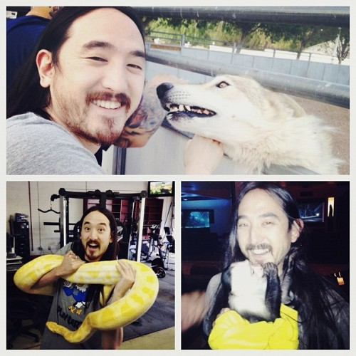 steveaoki:  only in Vegas can u hang out w/ wolves, monkeys and huge snakes… @mallymall7777 @danfleishman throwback photo… (Taken with instagram)
