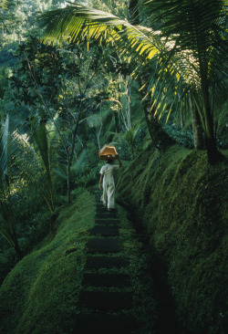 Mystic Ubud, Bali by photographer Justin Guariglia for National Geographic