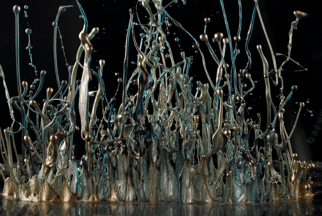"arpeggia:  Painting With Sound Like a 3-D take on Jackson Pollock, the latest work by the artist Martin Klimas begins with splatters of paint in fuchsia, teal and lime green, positioned on a scrim over the diaphragm of a speaker. Then the volume is turned up. For each image, Klimas selects music — typically something dynamic and percussive — and the vibration of the speaker sends the paint aloft in patterns that reveal themselves through the lens of his Hasselblad. For this series, Klimas spent six months and about 1,000 shots to produce the final images. The resulting images are Klimas's attempt to answer the question ""What does music look like?"" (via nytimes)"