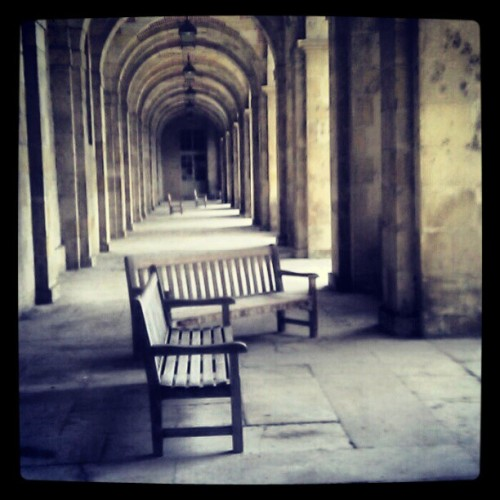 Have a sit and wait for the king #fontainebleau #castle #iledefrance #igersfrance  (Pris avec instagram)