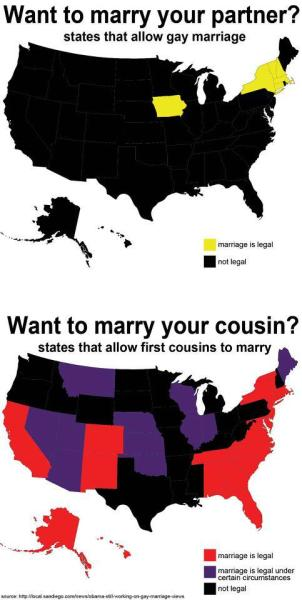davidrobert:  Go ahead and marry your first-cousin, but don't you DARE think about marrying two dudes. Gay rights are civil rights.