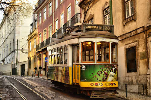 annaharo:  Iconic tram in Lisbon by The Globetrotting photographer on Flickr.