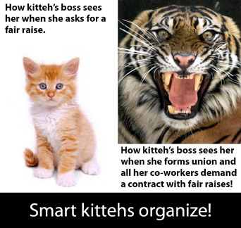 Be a smart kitteh- organize!
