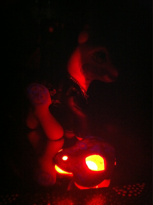 Teaser photo. More pictures coming of this latest Harry Dresden pony. Some new details. Glow in the dark highlights on the runes and summoning circle. Also a beard at the request of my customer. I added a neat touch and flocked the beard. This means it is soft and fuzzy to the touch.