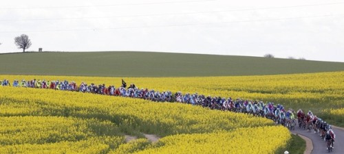 The peloton rides during the 190-km third stage of the Giro d'Italia in Horsens May 7, 2012. Orica Greenedge rider Matthew Goss of Australia won the stage while Taylor Phinney retained the leader pink jersey. The 95th Giro d'Italia start in Herning, Denmark, and finishes in Milan, northern Italy on May 27. (via Photo from Reuters Pictures)