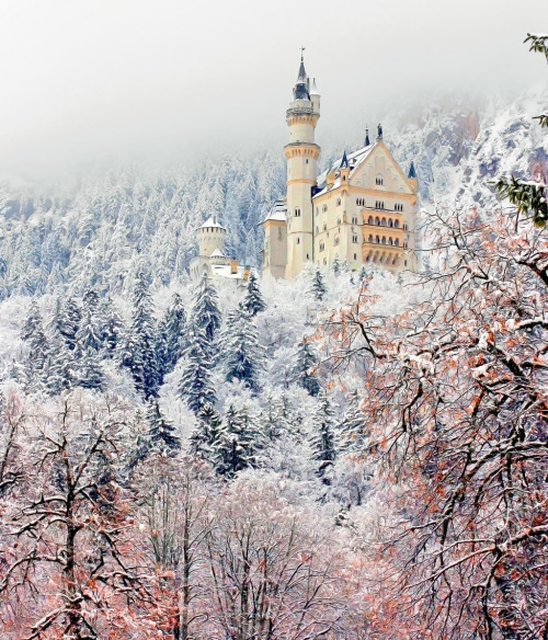 Neuschwanstein Castle, hopefully going here in September/October :)