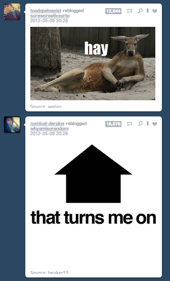 the-absolute-funniest-posts:  Follow this blog, you will love it on your dashboard
