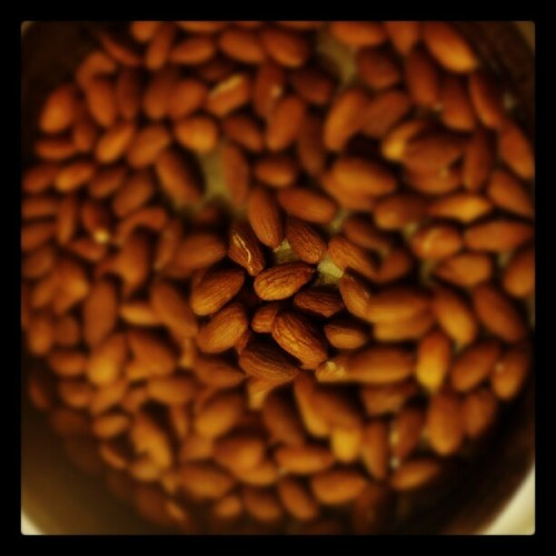 Almonds #dryroast #paleo #homemade #diy #noms (Taken with instagram)