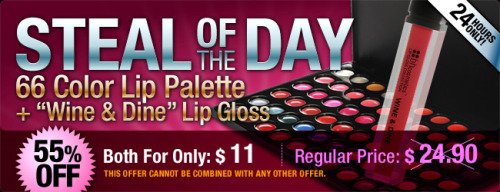 15 hours left to snatch our 66 Color Lip Palette & Lip Gloss in Wine & Dine for only $11! http://bit.ly/bhSteal