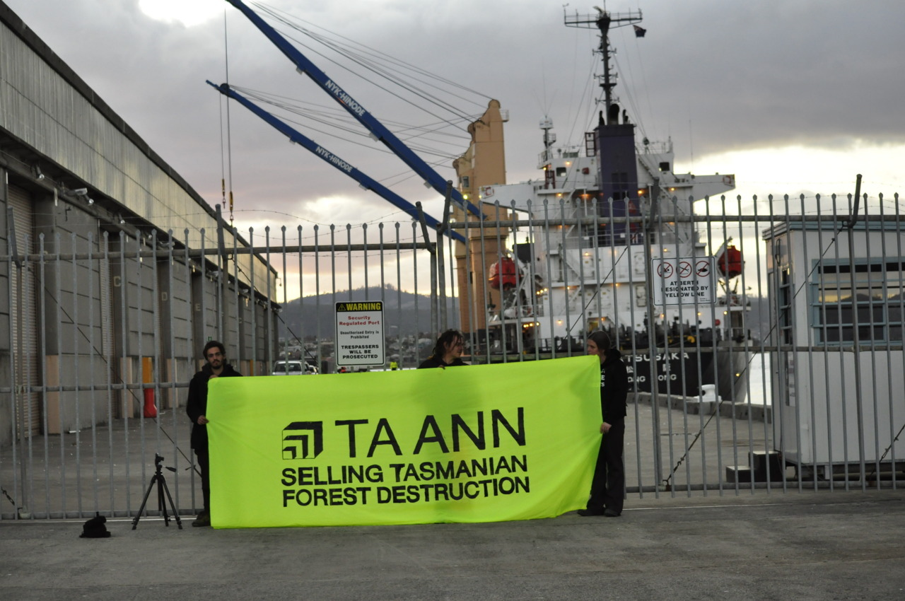 "Two Tasmanian Forest Protesters arrested on timber vessel at Hobart Wharf  Media Release 10 May 2012 - In Tasmania today, two protesters have been arrested after boarding a veneer vessel at the Hobart wharf, after a peaceful demonstration about Ta Ann loading world heritage value forests as veneer for export. Both women were arrested for trespass and are being held on remand till they appear in Hobart magistrates court this afternoon at 2pm.  Rosie Phillips of Lachlan was arrested for trespass after climbing one of the loading cranes.  Rhiannon Curtis from the United Kingdom was arrested with trespass and resist arrest after attaching herself to the gangplank on the vessel. ""Today's protest was held to demonstrate our opposition to the ongoing logging of Tasmania's world heritage value forests.  Ongoing logging in areas such as the Picton Valley and Butlers Gorge are being driven by the wood supply contract to Ta Ann, these forests are in urgent need for protection before the values are lost,"" Huon Valley Environment Centre's Jenny Weber said. ""Ta Ann is driving the logging of forests that have been verified as having conservation values by the independent experts appointed by the Intergovernmental Agreement.  However, Ta Ann falsely claims that their timber from Tasmania is from plantations, regrowth and environmentally friendly practices.  As recent as this week, Malaysian news reports and Australian online industry news, claimed that 'Ta Ann is producing eco-friendly products for the Japanese market using entirely imported logs from its plantation in Tasmania',"" Jenny Weber said."