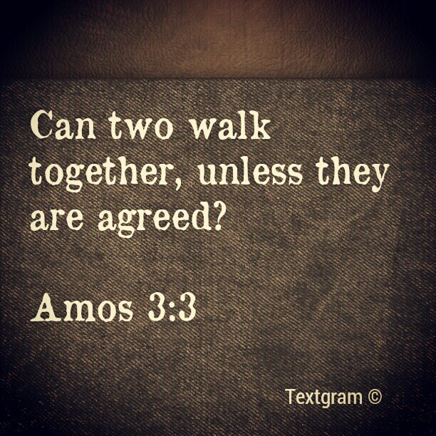 I #love this #verse! It speaks to me each time I read it…#simple, #true and #beautiful. #Amos3:3 #God #Word #Bible (Taken with instagram)