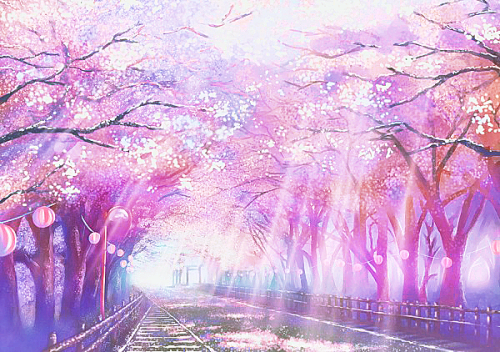 ★ Cherry Blossom | Original