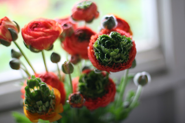 "floralies:  (via Floret Flower Farm: ""super green"" love)"