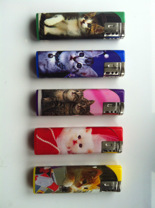 cute cat lighters i got today in the post