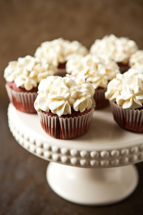 red velvet cupcakes with cream cheese cool whip frosting.