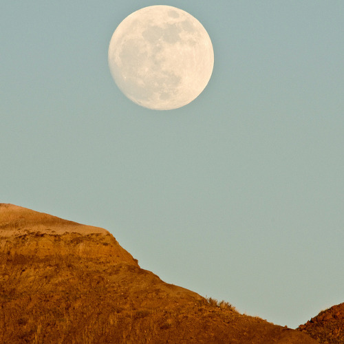 1205_0243 Not-quite-super-moon by wild prairie man on Flickr.