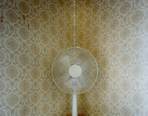 mpdrolet:  Fan, 2011 Juliane Eirich Itoshima