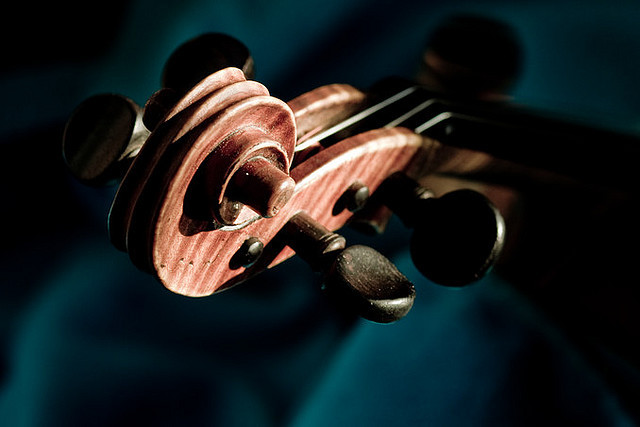 syuniikiss:  violin scroll (by mitch98000)