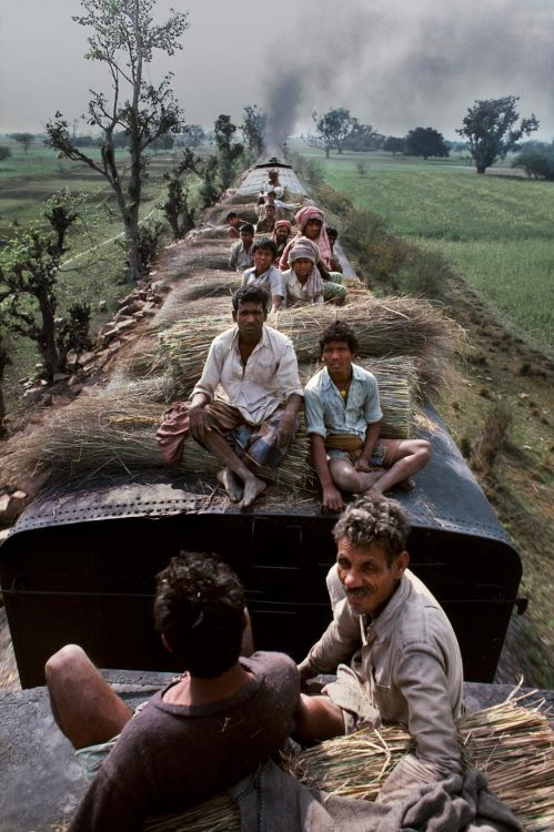 happytabby:  near Calcutta, India
