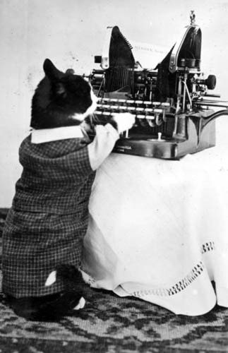 oldtimeycats:  Cat with Typewriter by State Historical Society of North Dakota on Flickr. Photograph by Nancy Hendrickson.