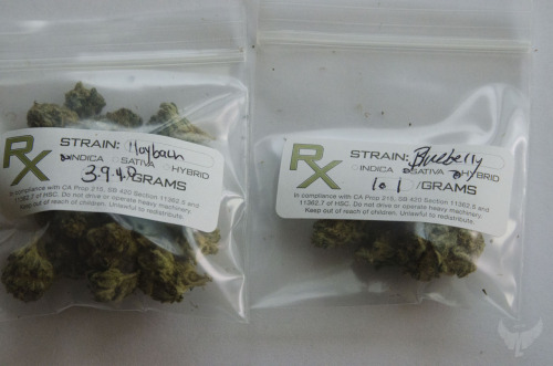 Just picked up some Maybach O.G. Kush & some Blueberry from the club