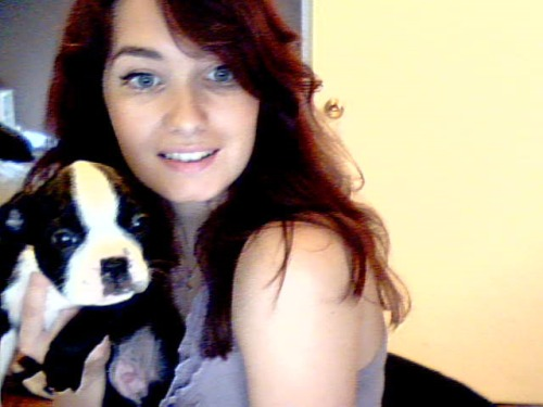Meet Henri, my new two months old Boston Terrier. He's adorable!