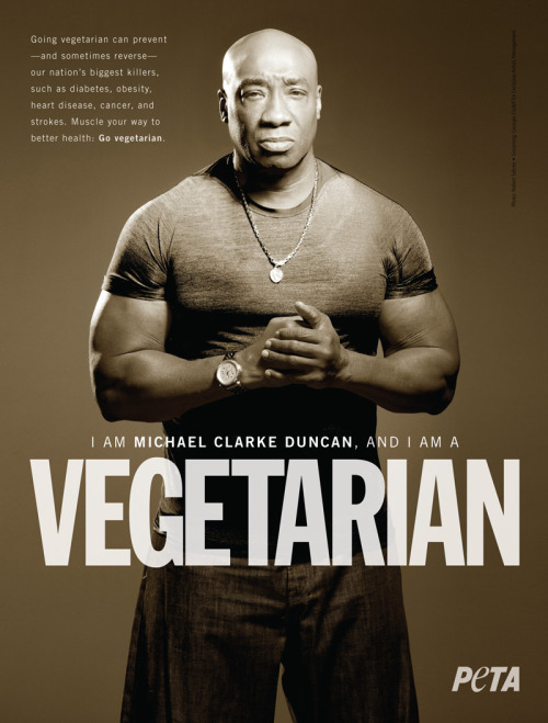 I served Michael Clarke Duncan a few gourmet vegan dinners back in my server days, and let me assure you- this dude is HUGE, strong, and not afraid to stand up for what he believes in. Love it. Check out his brilliant interview here!