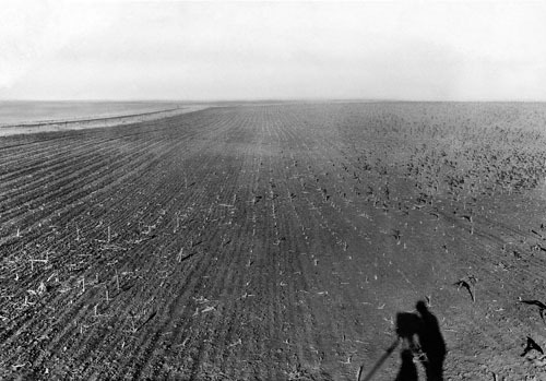 "July 30, 1931: A field of crops ravaged by grasshoppers in the Great Plains. According to an Associated Press article published a few days earlier, one South Dakota farmer, ""hearing that turkeys would eat the grasshoppers, sent his flock into the fields."" In something of a David-and-Goliath tale, the turkeys came back without feathers.Photo: The New York Times The Times' The Lively Morgue is a relatively new blog, but already proves able to live up to its promise of being ""A Treasure House of Photographs"". The back-story on how The Lively Morgue came to be can be found - where else? - at Storyboard: The Morgue Lives!"