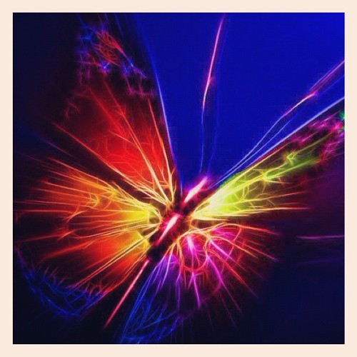 irenesakul:  #repost #instalike #lovely #butterfly #iColor (Taken with instagram)