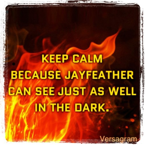 ht-syrup:  #jayfeather #(Made with @Versagram) #warriorcats #warriors #dark #erinhunter (Taken with instagram)