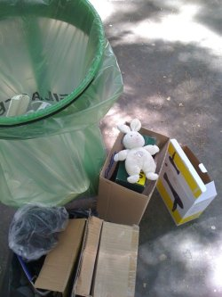 Doudou Lapin SDF | Homeless Teddy Rabbit
