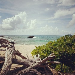 #picoftheday #virgingorda #summer #beach #caribbean #sky  (Taken with instagram)