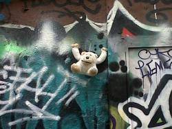 Singe-ours SDF | Homeless Monkey-bear | (© KattyC)