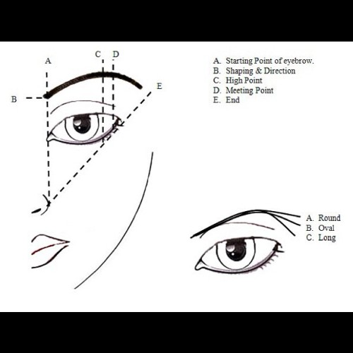 therealglamour:  EyeBrow #makeup basic diagram brows always takes A LOT of practice 💋 (Taken with instagram)