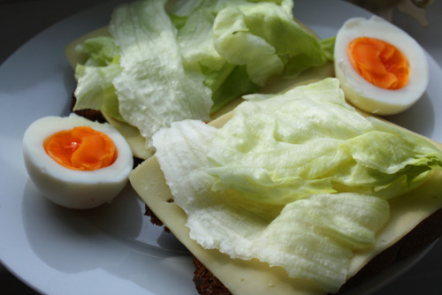 Dinner: Bread with cheese and salad + one egg :)