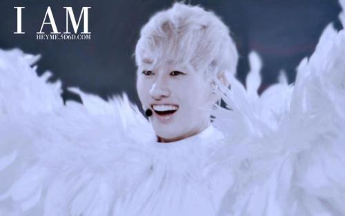 What do you think? he's like Pigeon or Angel ? *Me; like Angel ^^v
