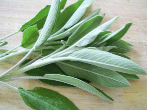3 spiritual benefits of sage