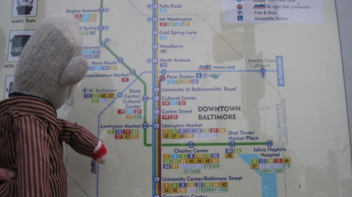 Monkeyin' around on the Metro. 5/9/12