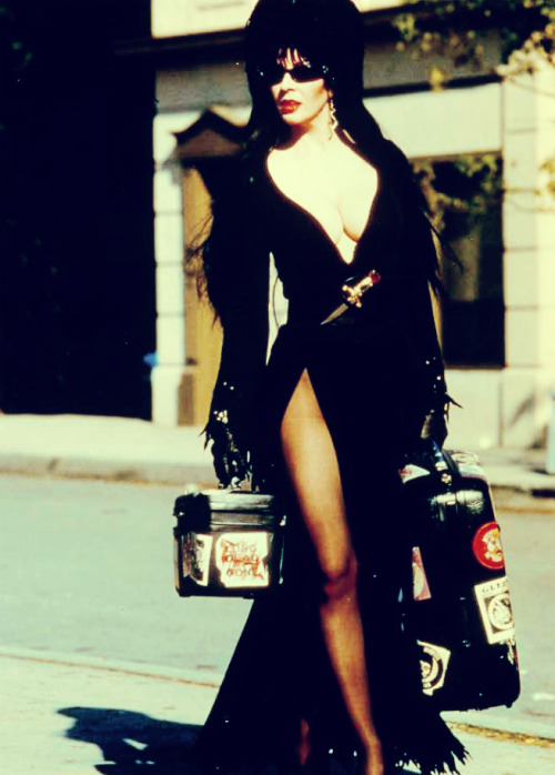 vintagegal:  Elvira, Mistress of the Dark (1988)