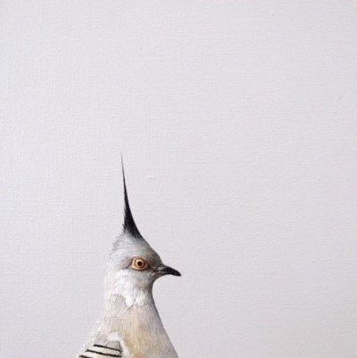 Jonathan Delafield Cook's series of pigeon portraits are captivating - I especially appreciate the playful use of space in the compositions (and this pigeon's hairstyle, of course). Found via the art room plant.