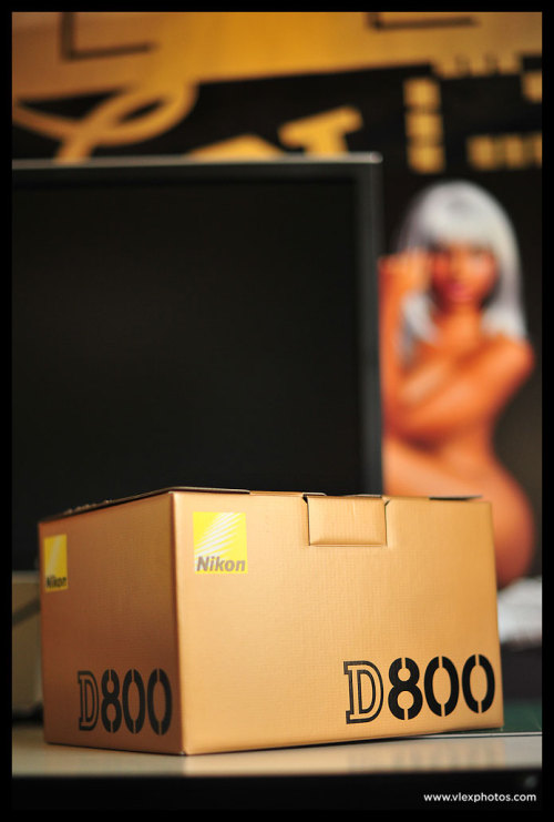 After 83 days of waiting I finally got my new body! #NikonD800