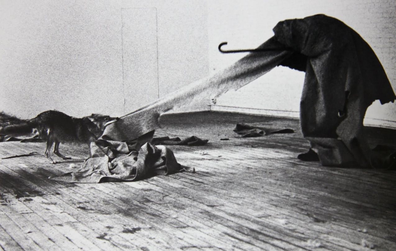 cavetocanvas:  Joseph Beuys, I Like America and America Likes Me, May 1974 A master of compelling performance pieces, Beuys flew to New York, picked up by an ambulance, and swathed in felt, was transported to a room in the Rene Block Gallery. The room was also occupied by a wild coyote, and for a period of 8 hours a day for the next three days, Beuys spent his time with the coyote in the small room, with little more than a felt blanket and a pile of straw. While in the room, the artist engaged in symbolist gestures, such as striking a triangle and tossing his gloves to the coyote. At the end of the three days, the coyote, who had become quite tolerant of Beuys, allowed a hug from the artist, who was transported back to the airport via ambulance. He never set foot on outside American soil nor saw anything of America other than the coyote and the inside of the gallery.