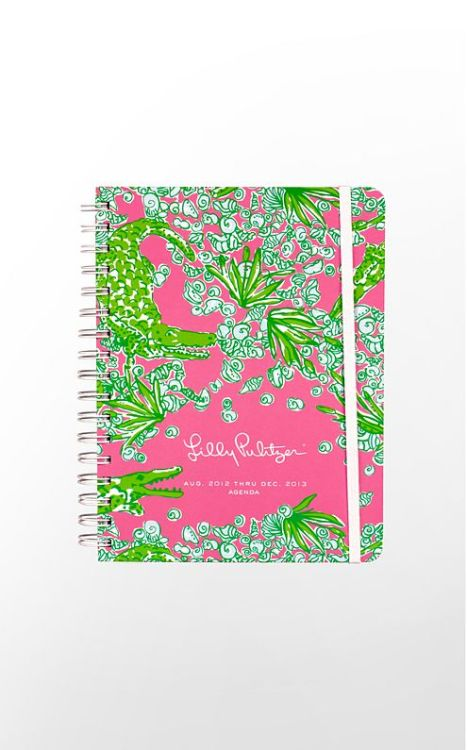 beelines:  Pre-ordered my 2013 Agenda. Get it in early July. PUMPED.