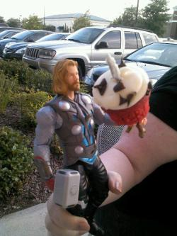 Thor enjoys cupcakes from Sweets By Holly. His favorite is clearly Red Velvet, because it matches his cape.