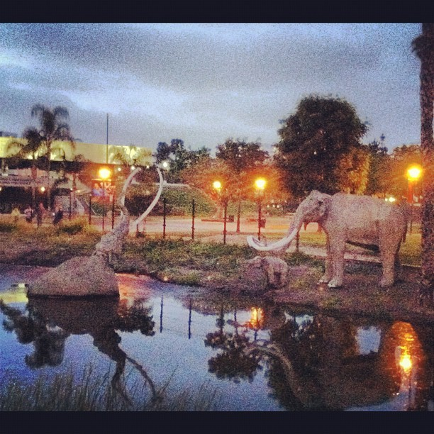 I've fallen and I can't get up! (Taken with Instagram at La Brea Tar Pits)
