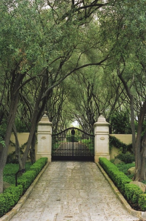 wouldn't you love to drive home down this driveway?