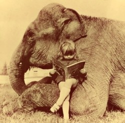justcallmegrace:  reading to my elephant